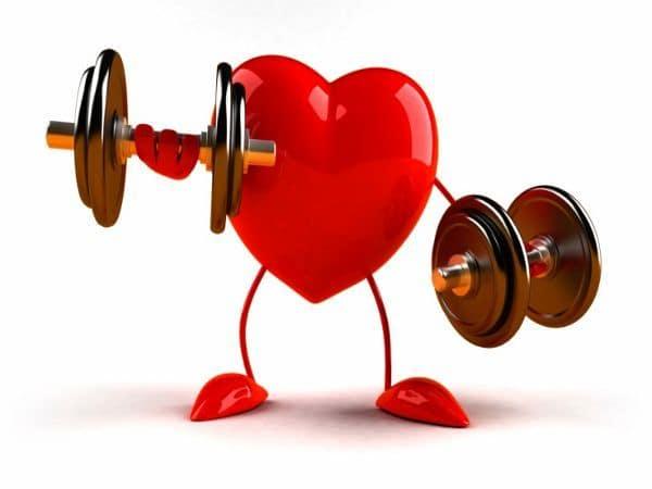 musculation et le rythme cardiaque :